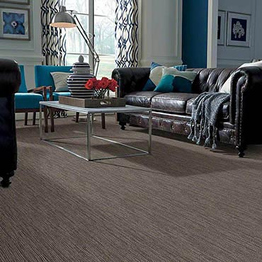 Anso® Nylon Carpet | La Follette, TN